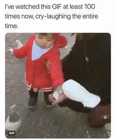 Dominance 101 Omfg she's just straight up stole that birds food lol - Cute Baby Humor Funny Video Memes, Funny Relatable Memes, Funny Jokes, Baby Funny Videos, Funny Baby Gif, Funny Baby Memes, 9gag Funny, Stupid Funny, Funny Cute