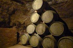 A beber vinito en Logroño con descuento :)) Firewood, Drink Wine, Wood Fuel