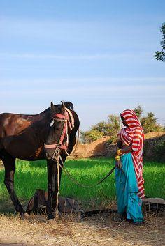 Rajasthan: Udaipur , India