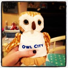 Owl City owl. Bought one of these at the last concert I went to :D