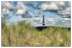 Ameland  © Beeldnet Fotograaf Jan Schram 2013. All images are copyrighted and may not be reproduced   without written permission.