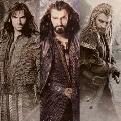 Kili, Thorin & Fili. Seriously, all iv'e wanted to do since i watched this movie the other day was watch it again. i'm soo hoooked!!