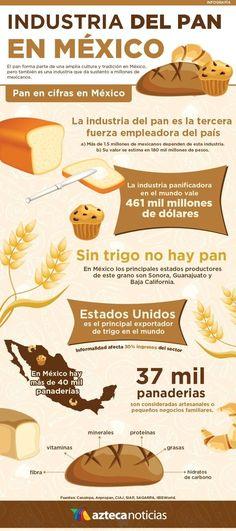 Aprende de México y los Mexicanos con estas 40 Infografias