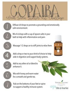 Young Living is the World Leader in Essential Oils. We offer therapeutic-grade oils for your natural lifestyle. Authentic essential oils for every household. Copaiba Essential Oil, Essential Oils For Pain, Essential Oil Diffuser Blends, Natural Essential Oils, Young Living Essential Oils, Thieves Essential Oil, Copaiba Oil Uses, Natural Oils, Natural Health
