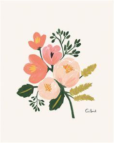 Rifle Paper Co. Botanical Print - Rose