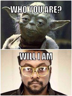 Yoda Finds A Conversation Buddy