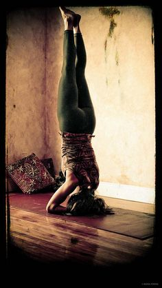 Sirsasana; king of asanas/postures.  Practicing Sirsasana will give you the courage to undertake new adventures, balances your endocrine system, revitalizes your organs, stimulates blood flow and metabolism.  It's time to see the world from a different angle <3