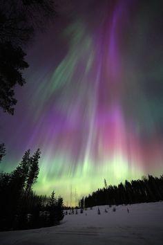 Aurora Boreal-Finland <3