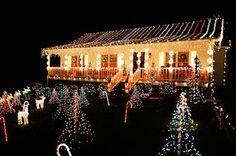 DVR Slave: The Great Christmas Light Fight finale tonight