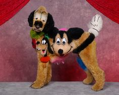 Top Performance PET DOG CAT GROOMING HAIR DYE COLORING GEL Coat ...