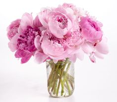 Flower Power: Quick Tips for Making a Better Bouquet Simple Flowers, Fresh Flowers, Beautiful Flowers, Spring Flowers, Flower Power, My Flower, Beautiful Flower Arrangements, Floral Arrangements, Pink Peonies