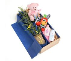 Gifts for new Mums and precious babies from Tree Gifts NZ are a beautiful way to welcome baby to the world and say congratulations to the proud parents. Gifts For New Mums, Baby Gift Box, Childrens Gifts, Newborn Baby Gifts, Welcome Baby, Baby Play, Congratulations, Gift Wrapping, Gift Wrapping Paper