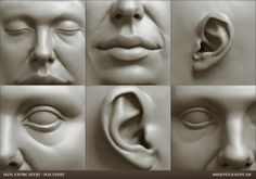 Digital sculpting studies of female facial features by Adrian Spitsa