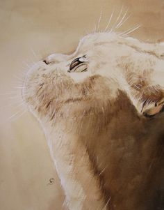 Purty Face - kitten original watercolor painting