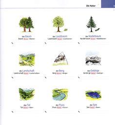Bildwörterbuch: Die Natur