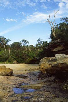 billshapter.com - galleries – NSW, Australia