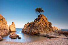 Cala Mar Menuda. Esta encantadora cala se encuentra en Tossa de Mar. Es una de las más pequeñas de la zona pero también una de las más bonitas.