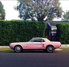 pink mustang . . . I had a '67 pink Mustang in 1968, though not convertible . . . didn't want the pink, but price was too good to pass . . .