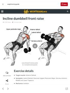 mens fitness - Weight Training Guide Free training programs, exercise guide, and videos Chest Workouts, Gym Workouts, At Home Workouts, Muscle Fitness, Health Fitness, Free Training Programs, Fitness Bodybuilding, Dumbbell Workout, Shoulder Workout