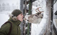 Finnish Squirrel-Whisperer Konsta Punkka Feeds Wild Animals For Cute Wildlife Photos Forest Animals, What A Wonderful World, Bored Panda, Amazing Photography, Cute Animals, Wild Animals, Parks, Wildlife, Creatures