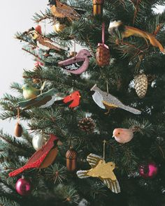 Cinnamon Bird Ornament How-To