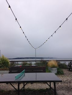 Concrete custom ping-pong table at the Pourhouse, Port Townsend. Design and build by Brendon Piskula (Attractive Lighting) and Brahdy & Brahdy Custom.