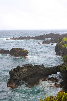 Road to Hana--This is one of the most beautiful places I have been!