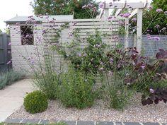 New small garden design painted shed Fencing trellis garden ideas