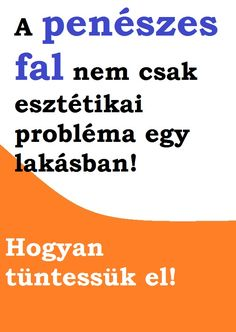 Mit tegyünk ha penészes a fal? Fal, Diy And Crafts, Home Improvement, Cleaning, House, Haus, Home Cleaning, Home Repair, Home Improvements