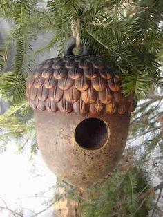 Oak Acorn Bird House