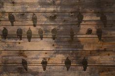 Wired Birds Arte De Legno Photographic Print