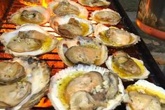 Easy Grilled Oysters on the Half Shell-Fresh grilled oysters, done the easy way: on the grill. This recipe reveals the secret of opening oysters the easy way. Add bread to mop up the sauce! Bbq Oysters, Grilled Oysters, Fresh Oysters, Appetizer Dishes, Appetizer Recipes, Dinner Recipes, Seafood Dishes, Seafood Recipes, Shellfish Recipes