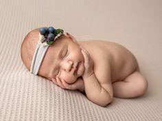 Berry Sweet / Newborn Photo Prop / Blueberry headband / baby