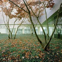 David Chipperfield Architects - Laboratory Building, Basel