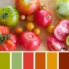 Tomatoes Color Palette