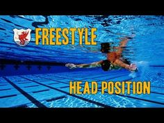 Head Position in Freestyle: Have Your Cake and Eat It, Too - usatriathlon.org