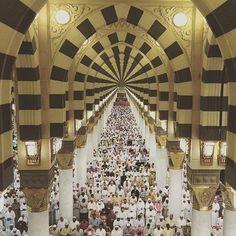 ﷽ — myprayerroom:   Prophet Mohammed (PBUH) Mosque,...