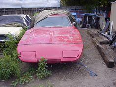 1969 Dodge Charger Daytona, Dodge Daytona, Plymouth Superbird, Dodge Muscle Cars, Mopar Or No Car, Drag Cars, Barn Finds, Super Cars, Wings