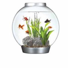 Image for Big BiOrb with Light 60ltr Silver Coldwater Aquarium Starter Kit from Pets At Home