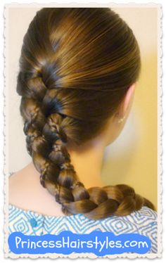 Micro Braid Lattice Wrap Hairstyle from Princess Hairstyles