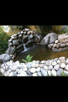 Backyard on pinterest backyard waterfalls fish ponds for Fishing ponds in san antonio