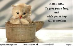 This adorable animated kitten gives out a hug. Free online Cute Kitty ecards on Cute Cards Good Morning Hug, Cute Good Morning Images, Good Morning Wishes, Good Morning Quotes, 123 Greetings, Hug Quotes, Hugs And Cuddles, Real Friends, Cute Cards
