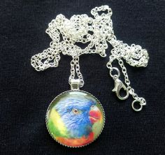 Handmade Rainbow Lorikeet 25mm Pendant Necklace (PG-01054) Glass Pendants, Parrot, Crochet Earrings, Rainbow, Pendant Necklace, Chain, Parakeet, Silver, Handmade