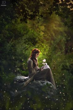 """""""The world is full of magic things, patiently waiting for our senses to grow sharper.""""  ~ W.B. Yeats Enchanted Woods by Jessica Drossin on 500px"""