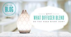 In the mood for something new? Sometimes you're looking for a different diffuser blend, but you just don't know what to try. Take our quiz to find the blend that perfectly matches your mood—or sets the mood you want to create! Whether you're checking things off your to-do list or cuddling up with a good book, we'll help you find a blend ...