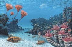 devonian fish - Google Search