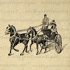 Printable Horse Drawn Coach Image Download Horse Carriage