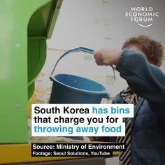 November World Economic Forum posted on LinkedIn World Economic Forum, Public Profile, Food Waste, South Korea, Seoul, Sustainability, Innovation, November, Creativity