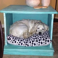 Best 25 Homemade Dog Bed Ideas On Pinterest Lou Cage