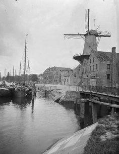 Rotterdam Delfshaven - Haven met molen en voormalig depot van de VOC. 1910